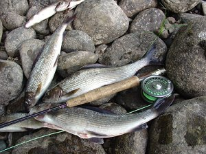 Нахлыст рыбалка