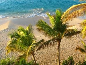 Бухта Черепахи (Turtle Cove) - маленький, очаровательный берег