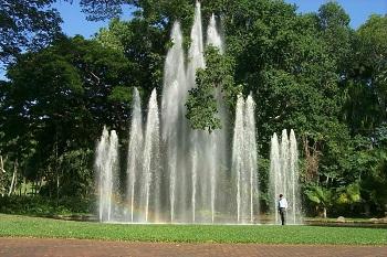 Ботанические сады Дарвина – жемчужина Австралии