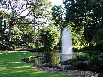 Каждое из растений располагается в той зоне сада, где ему бы было более комфортно произрастать