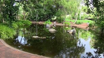 Чтобы ознакомиться со всеми экскурсиями в Ботаническом саду следует посетить визит-центр